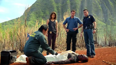 Hawaii Five-0 - Wahine'inoloa - Season 3 Episode 8