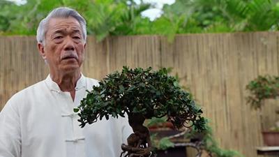 Hawaii Five-0 - Aohe Mea Make I Ka Hewa; Make No I Ka Mihi Ole - Season 8 Episode 19
