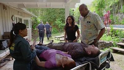 Hawaii Five-0 - Waiho Wale Kahiko - Season 8 Episode 25