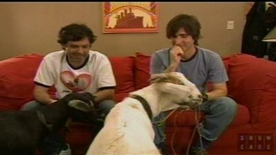 Who Can Be Tied to a Goat the Longest?