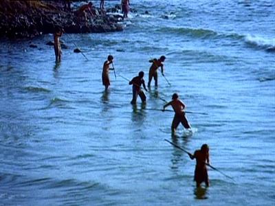 Tomorrow's Tide