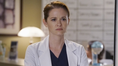 Grey's Anatomy - It's Alright, Ma (I'm Only Bleeding) - Season 12 Episode 19