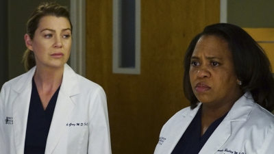 Grey's Anatomy - There's A Fine, Fine Line - Season 12 Episode 18