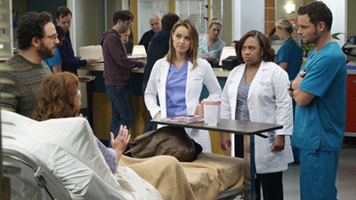 Grey's Anatomy - Roar - Season 13 Episode 6