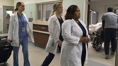 Grey's Anatomy - You Can Look (But You'd Better Not Touch) - Season 13 Episode 10