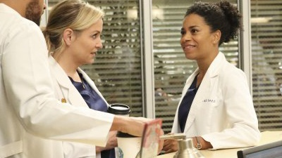 Grey's Anatomy - None of Your Business - Season 13 Episode 12