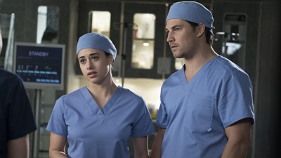 Grey's Anatomy - Beautiful Dreamer - Season 14 Episode 19