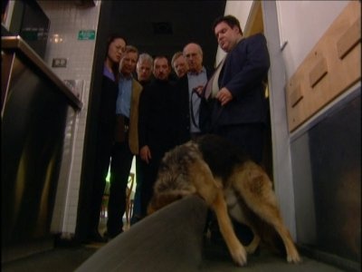 The Corpse-Sniffing Dog