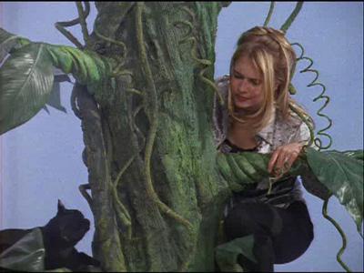Sabrina and the Beanstalk