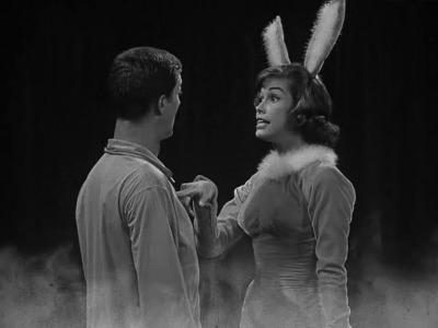 Washington vs. the Bunny
