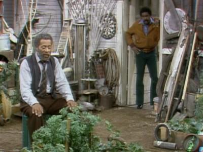 Fred's Treasure Garden