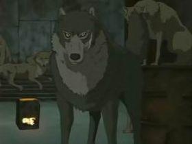 Fallen Wolves