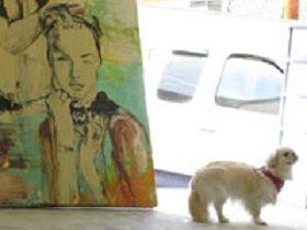 Pekaso and Yogi & Smokey
