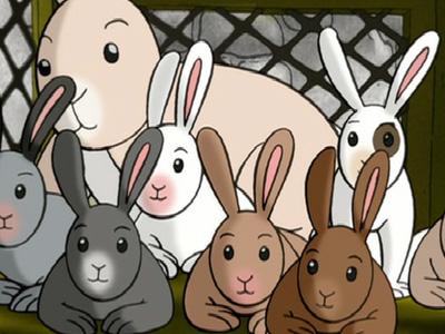Curious George's Bunny Hunt