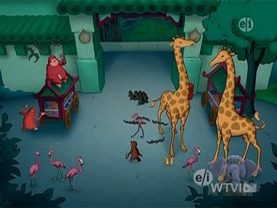 Zoo Night
