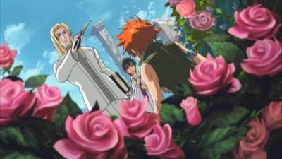 Knight of the Crimson Rose