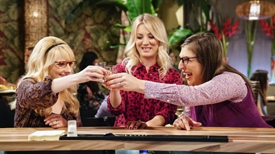 The Big Bang Theory - The Reclusive Potential - Season 11 Episode 20