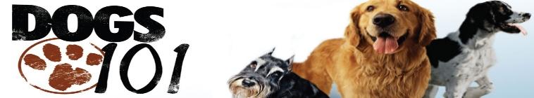 Traveling Dog Grooming Grayslake