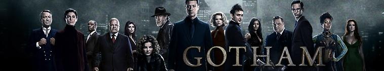 Gotham 274431-g8