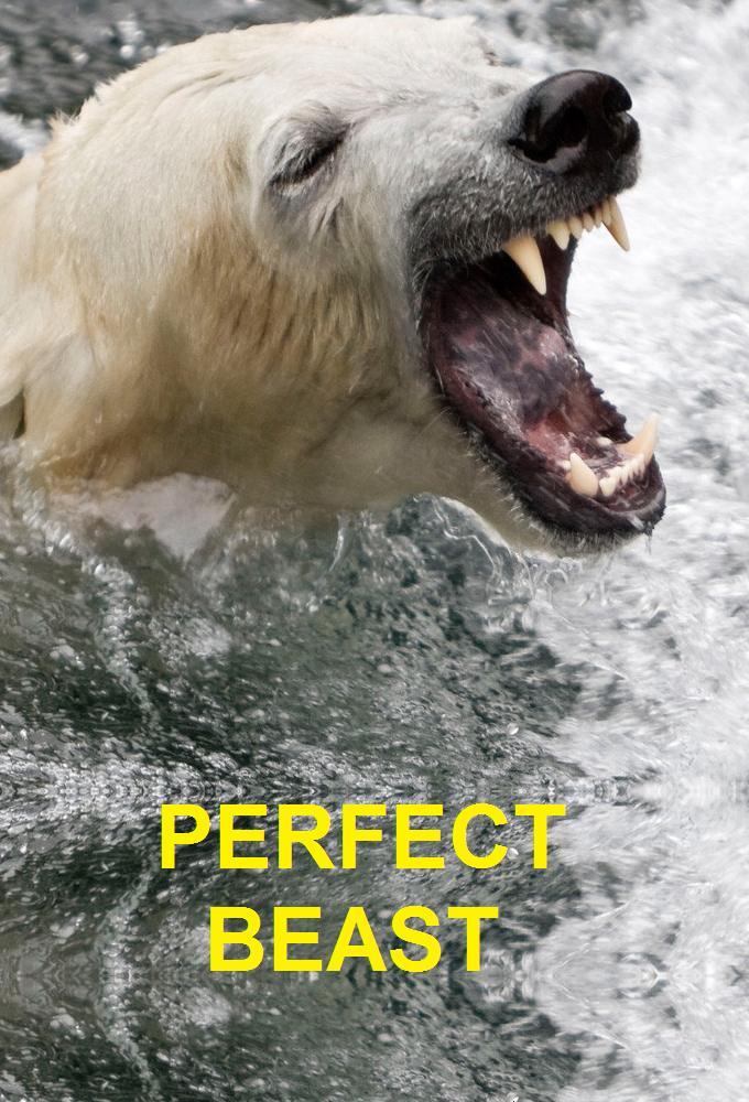 Perfect Beast