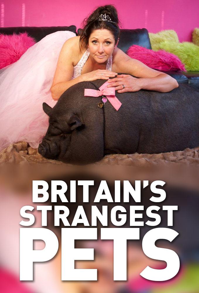 Britain's Strangest Pets