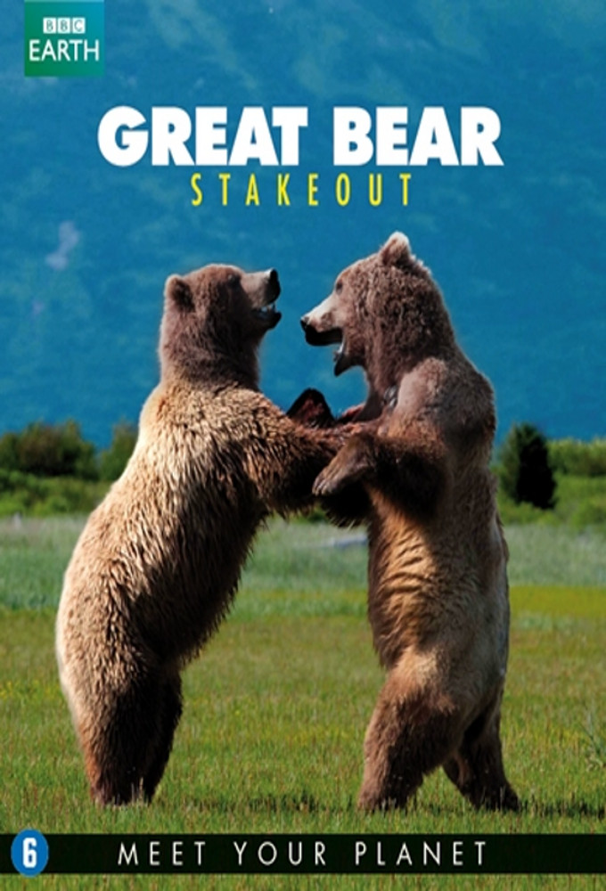 Great Bear Stakeout