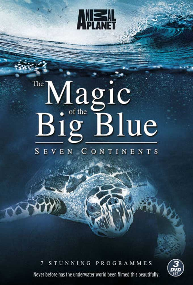 The Magic of the Big Blue