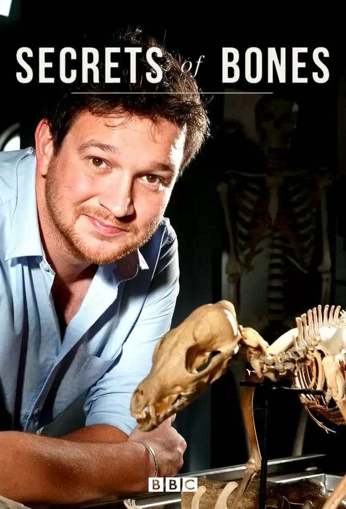 Secrets of Bones