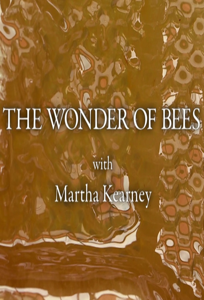 The Wonder of Bees with Martha Kearney