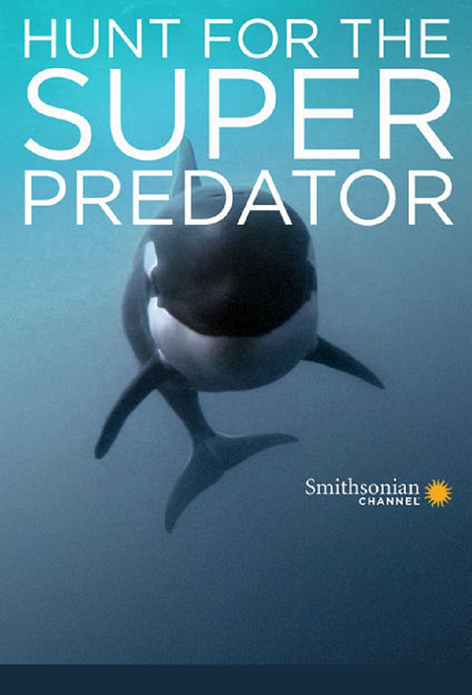 Hunt for the Super Predator