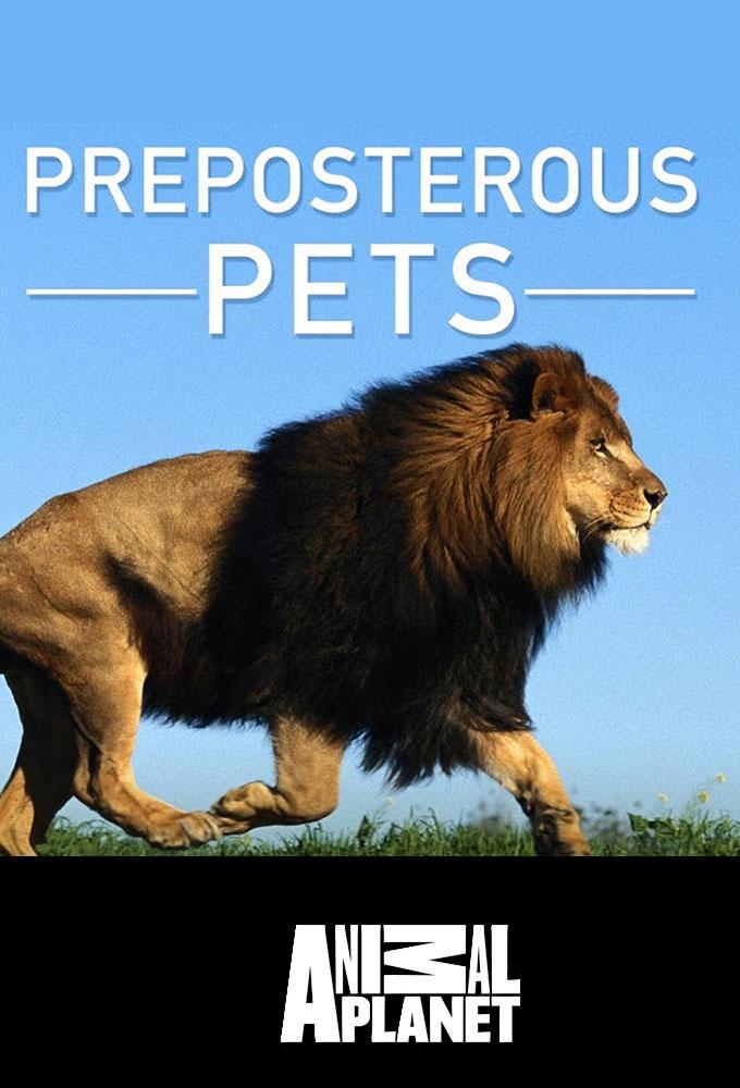 Preposterous Pets