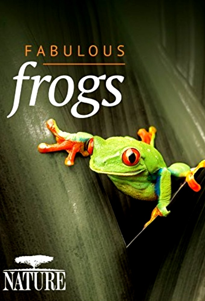 PBS Nature Fabulous Frogs
