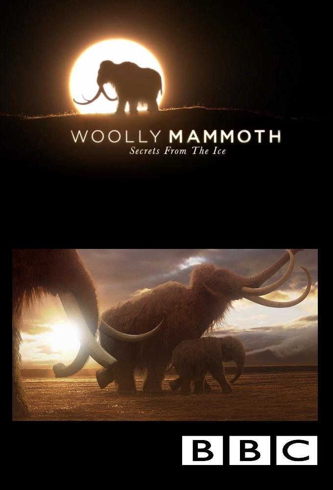 Woolly Mammoth- Secrets From The Ice