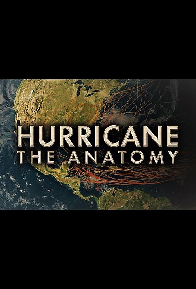Hurricane: The Anatomy