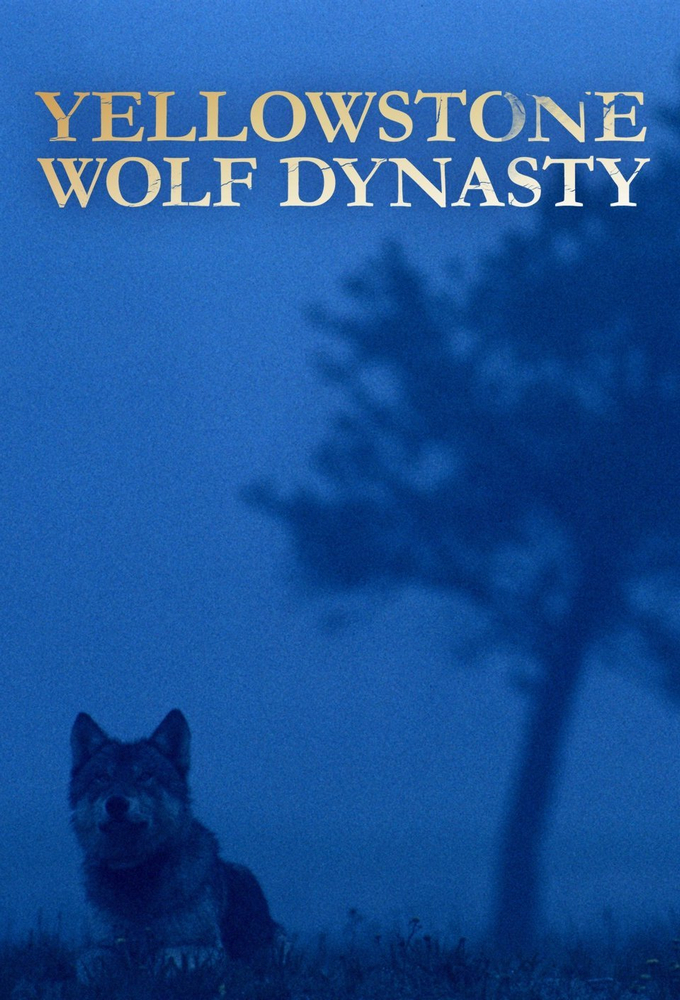 Yellowstone Wolf Dynasty