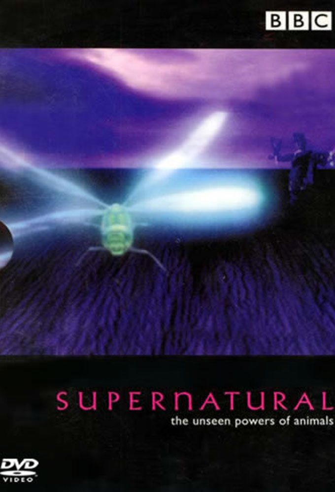Supernatural The Unseen Powers of Animals